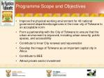 programme scope and objectives