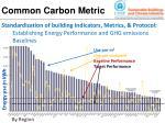common carbon metric