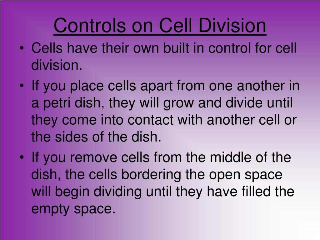 Controls on Cell Division