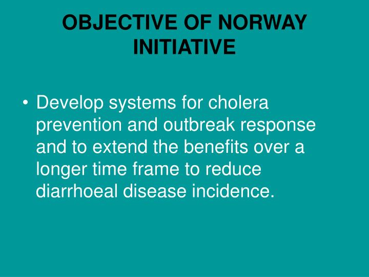 Objective of norway initiative