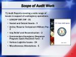 scope of audit work