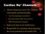 cardiac na channels