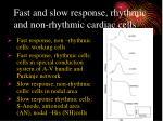 fast and slow response rhythmic and non rhythmic cardiac cells