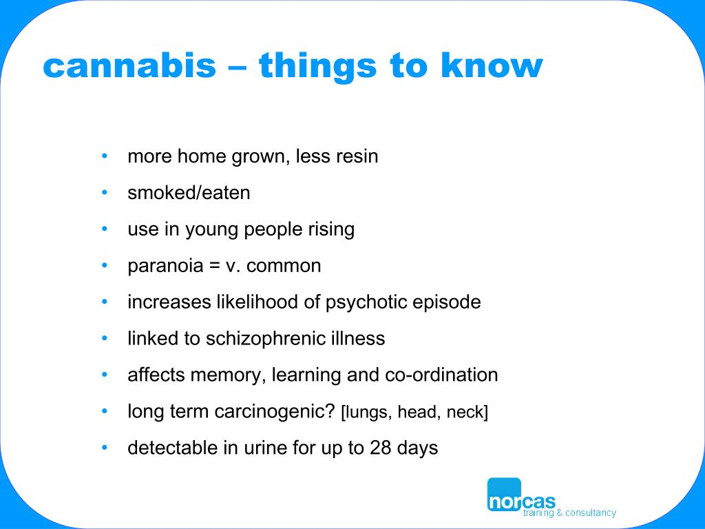 cannabis – things to know