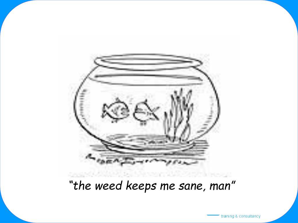 """""""the weed keeps me sane, man"""""""