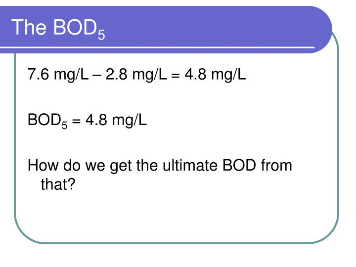 The bod 5