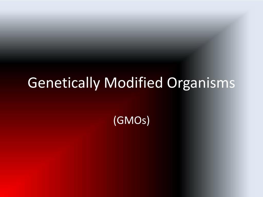 genetically modified organisms l.