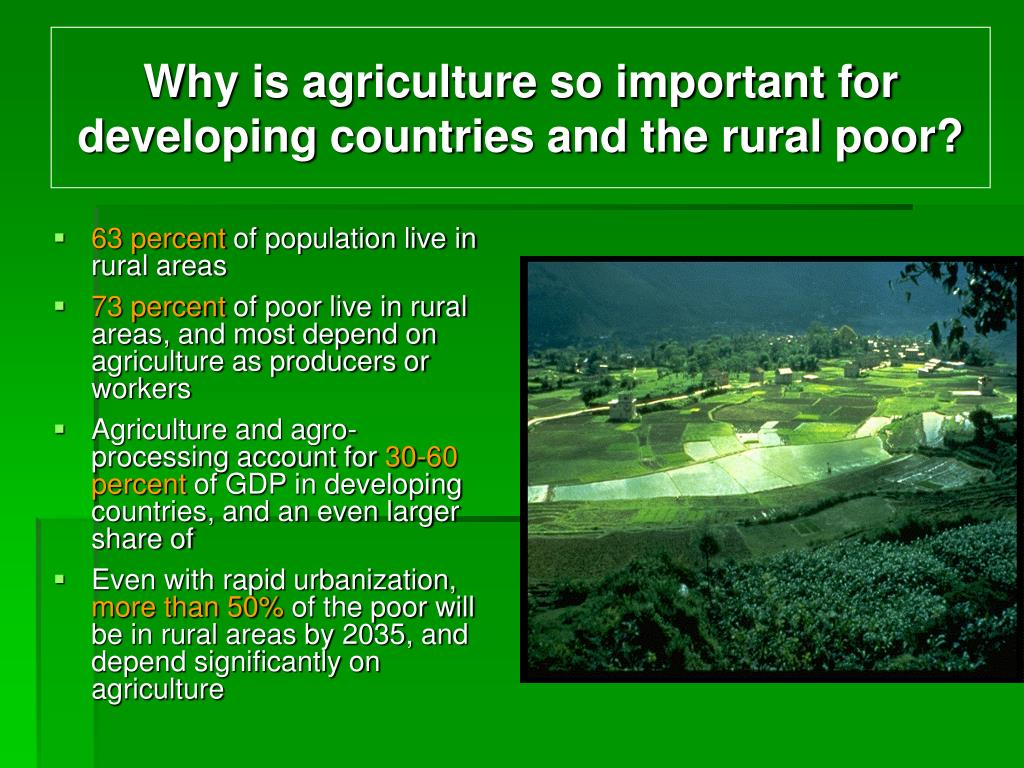 Why is agriculture so important for