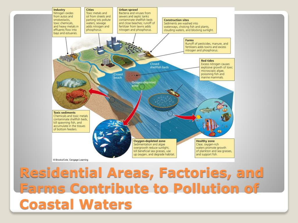 Residential Areas, Factories, and Farms Contribute to Pollution of Coastal Waters