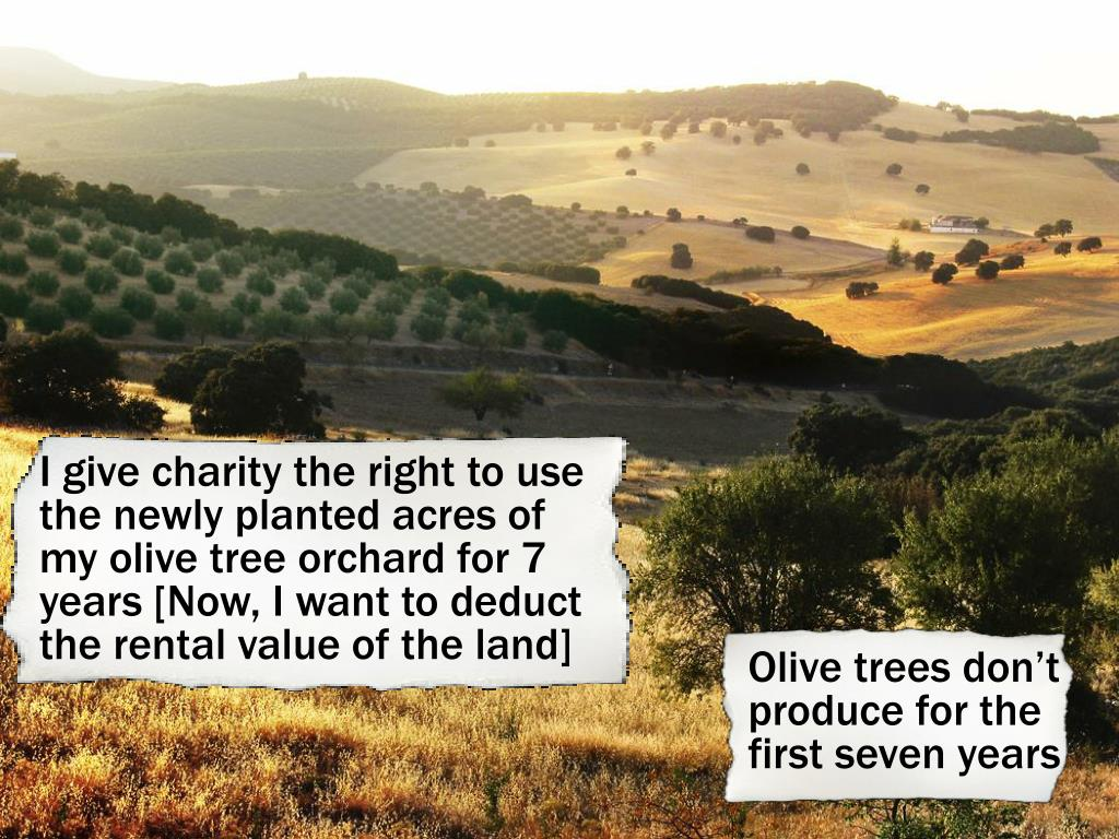 I give charity the right to use the newly planted acres of my olive tree orchard for 7 years [Now, I want to deduct the rental value of the land]