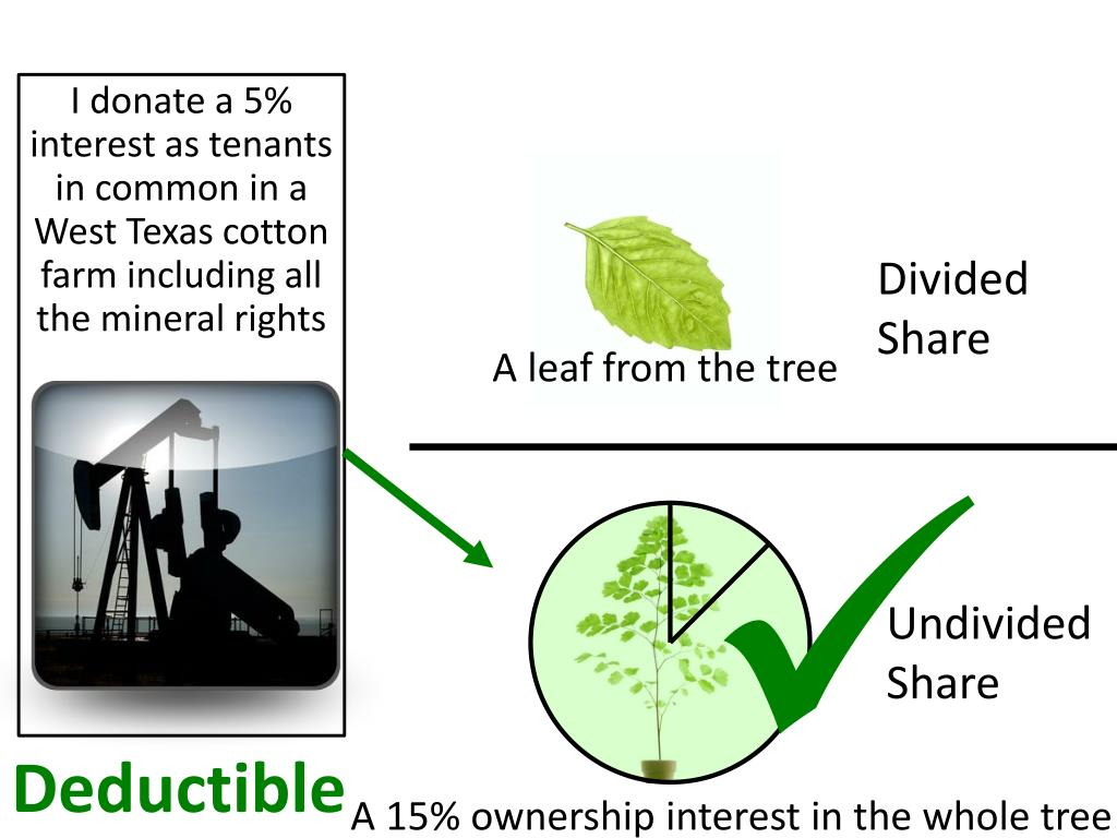 I donate a 5% interest as tenants in common in a West Texas cotton farm including all the mineral rights