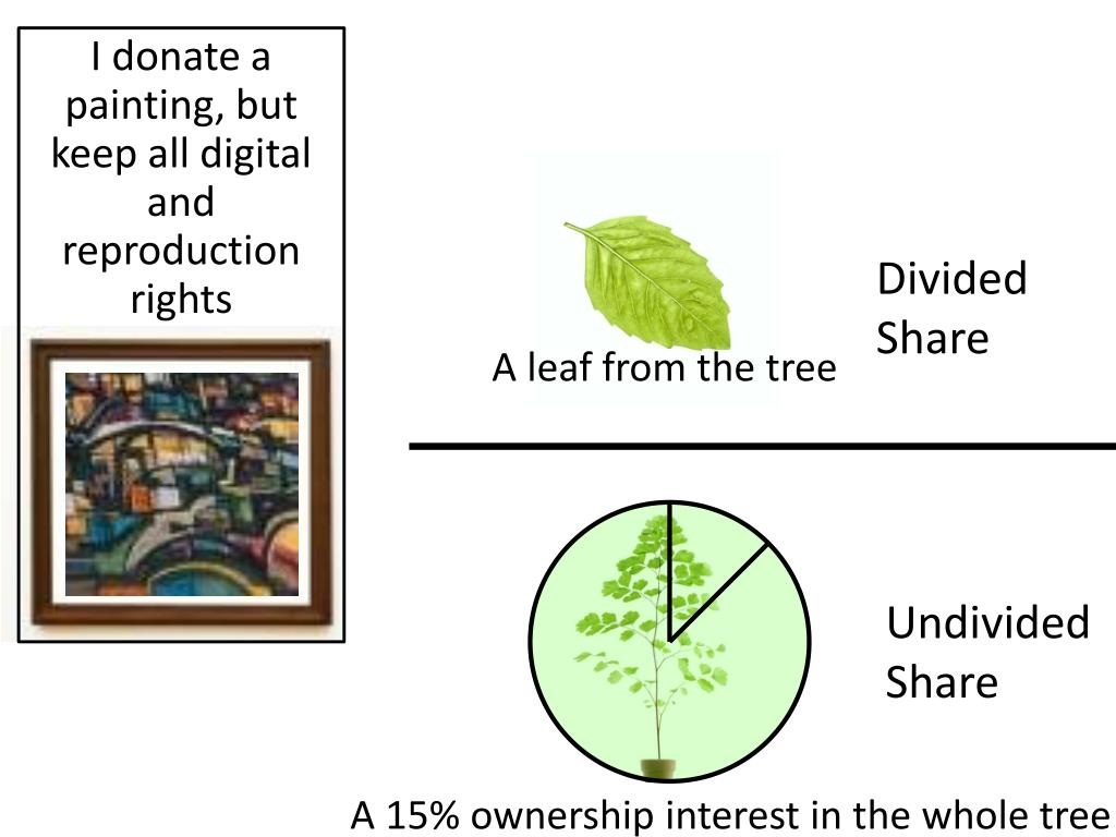 I donate a painting, but keep all digital and reproduction rights