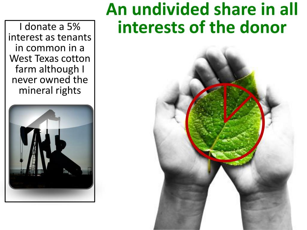An undivided share in all interests of the donor