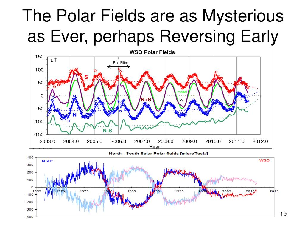 The Polar Fields are as Mysterious as Ever, perhaps Reversing Early