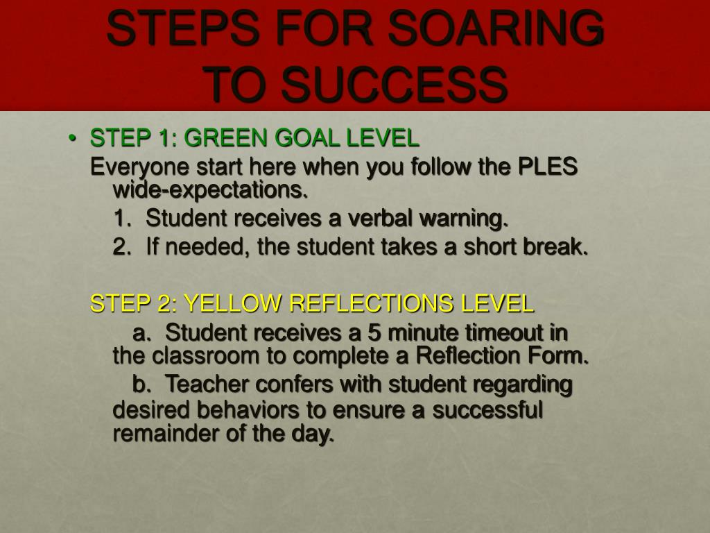 STEPS FOR SOARING TO SUCCESS