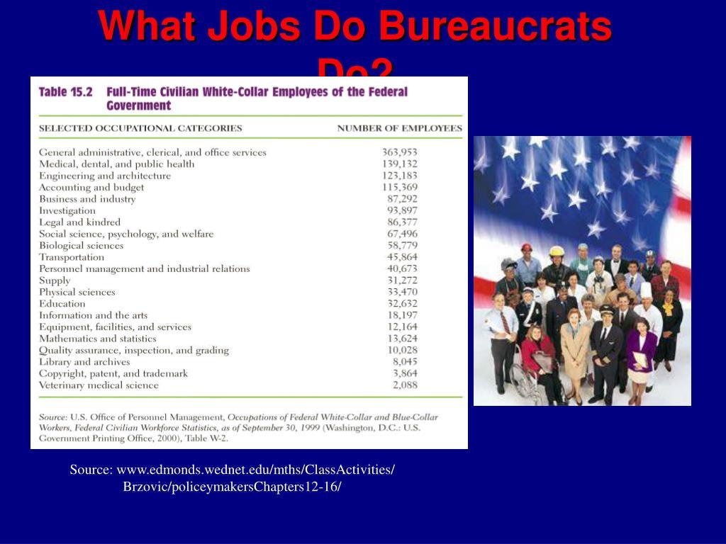 What Jobs Do Bureaucrats Do?