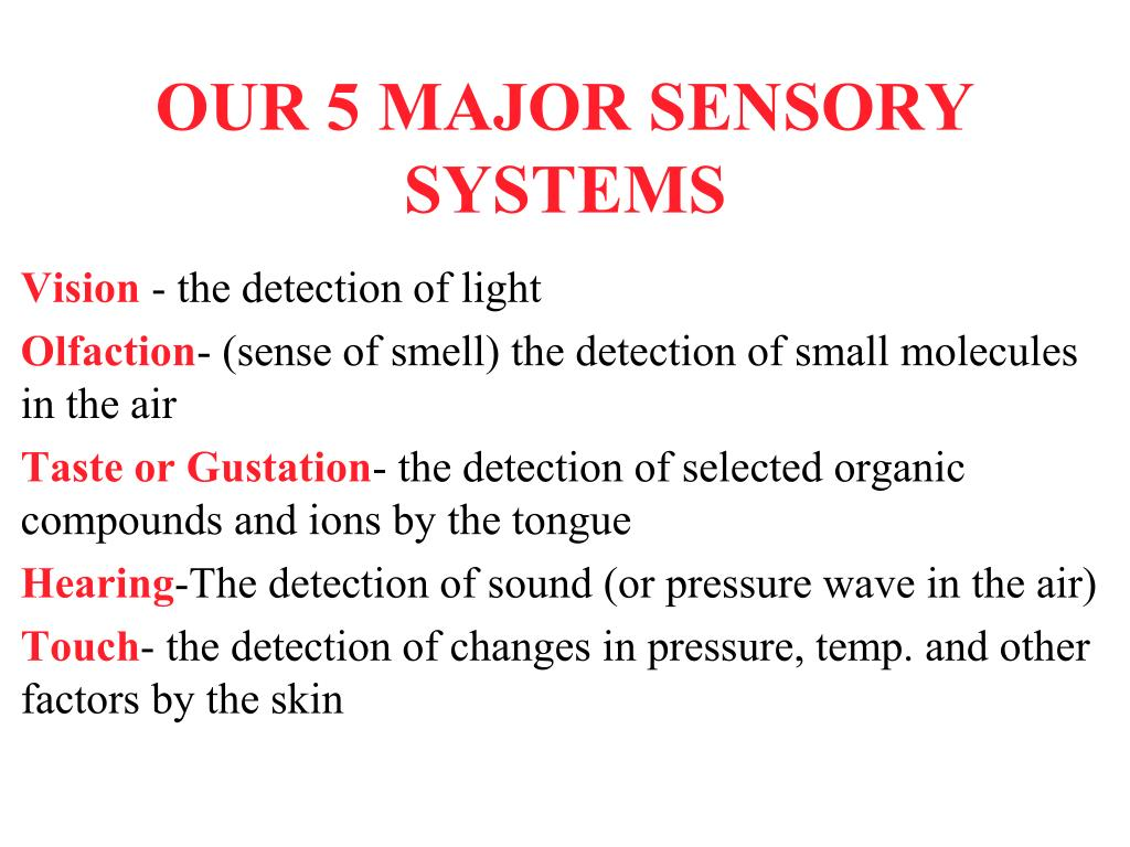 our 5 major sensory systems l.