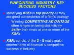 pinpointing industry key success factors46