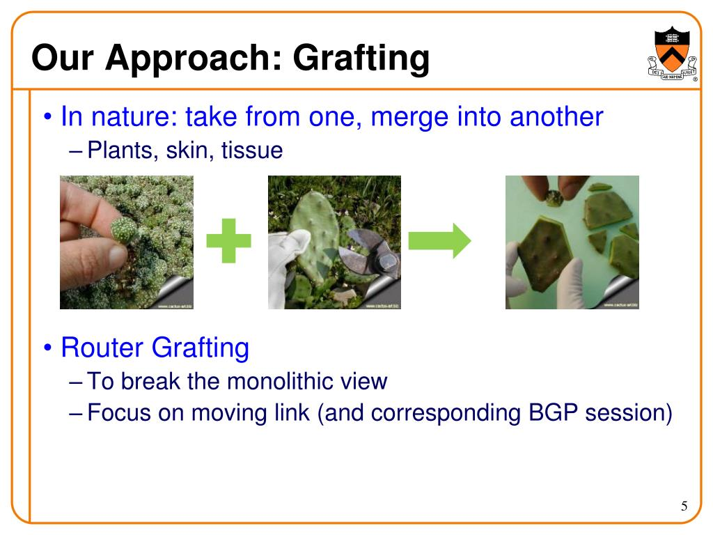 Our Approach: Grafting