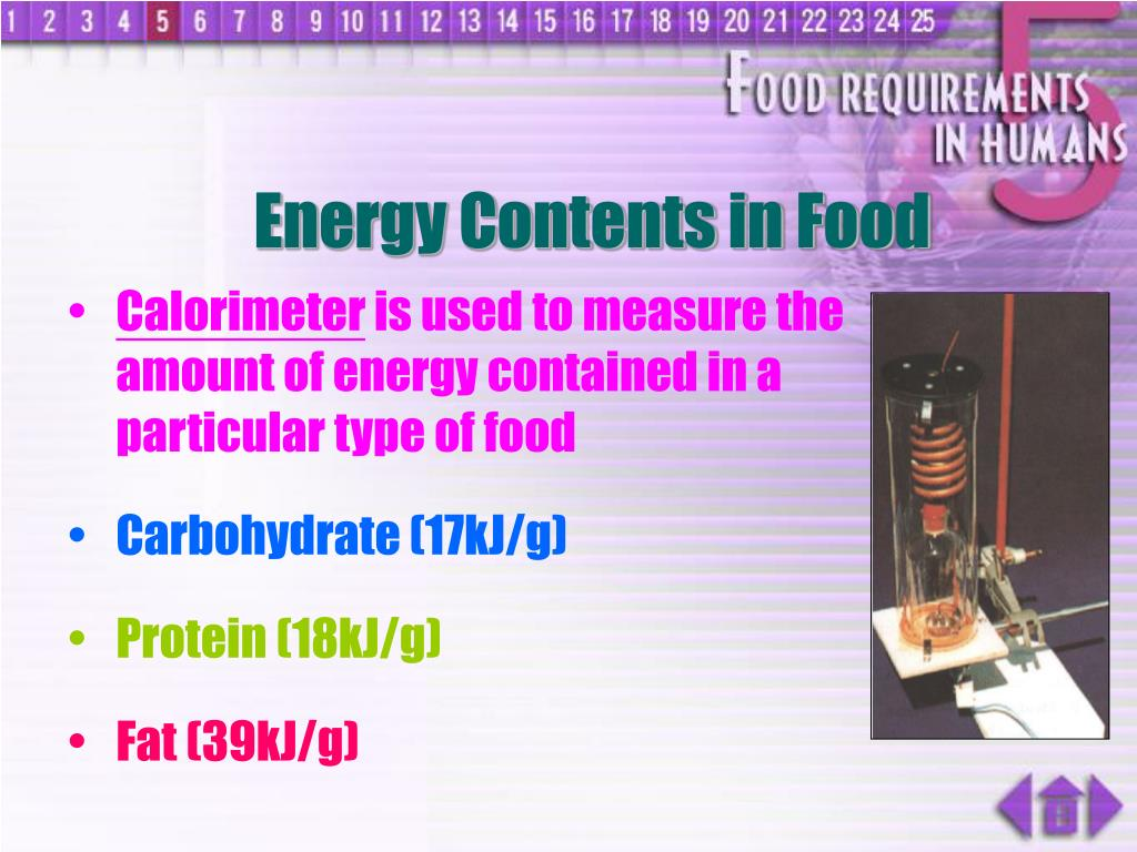 Energy Contents in Food