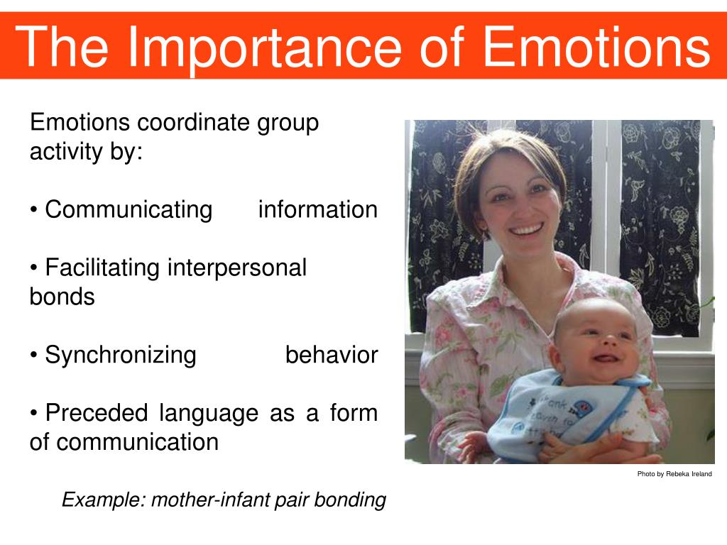 The Importance of Emotions