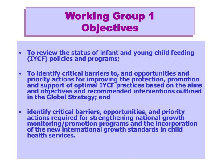 Working group 1 objectives