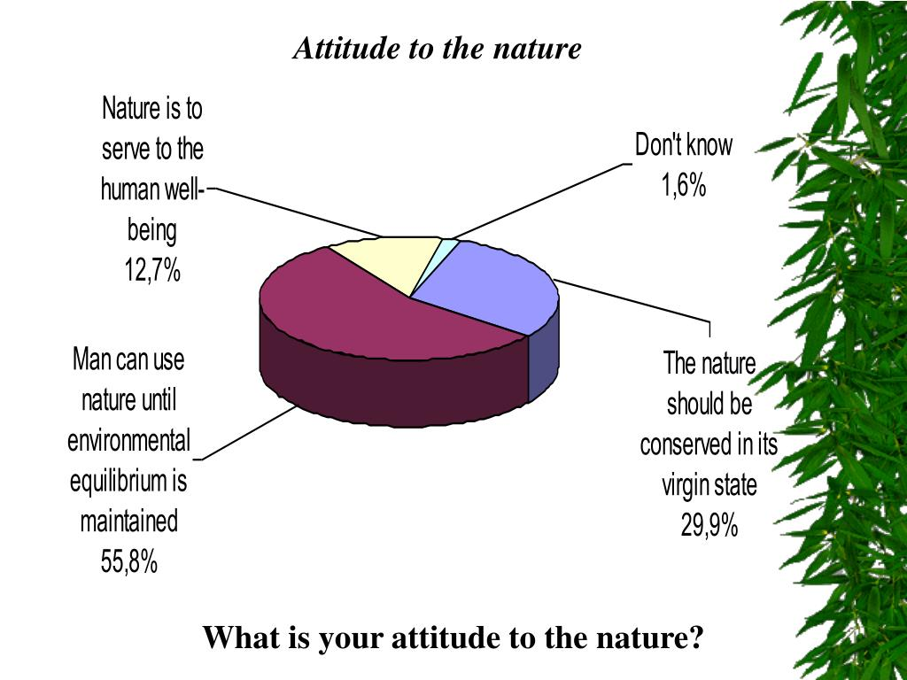 Attitude to the nature