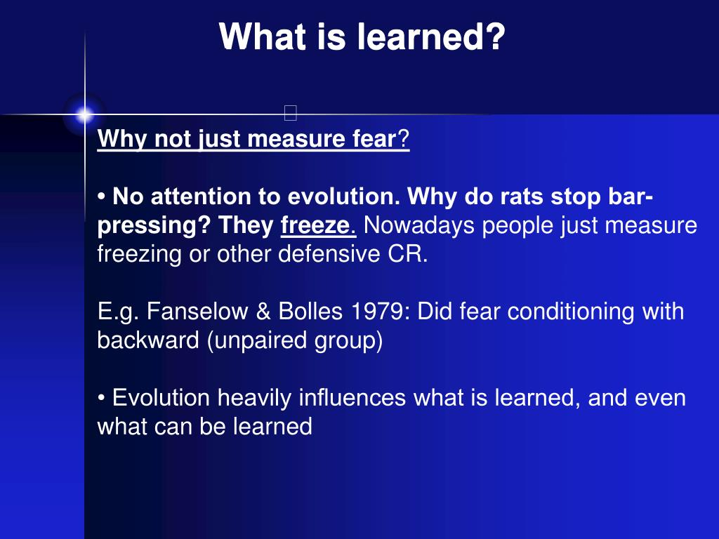 What is learned?