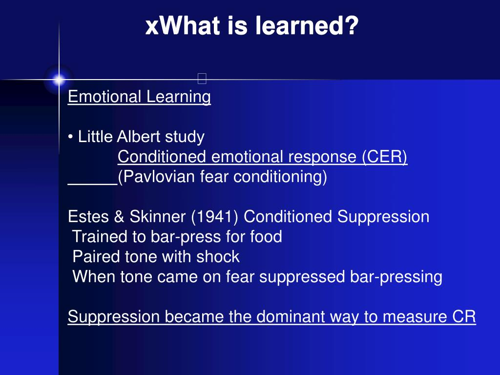 xWhat is learned?