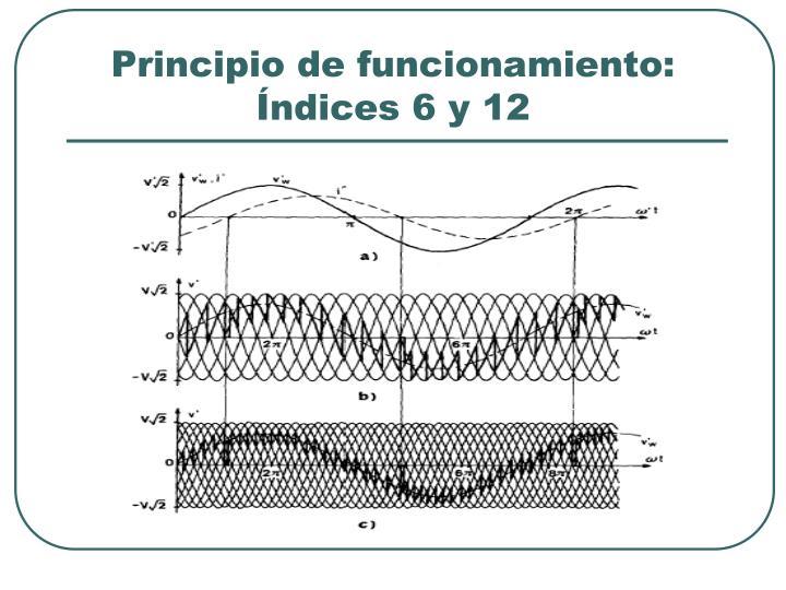 Principio de funcionamiento: Índices 6 y 12