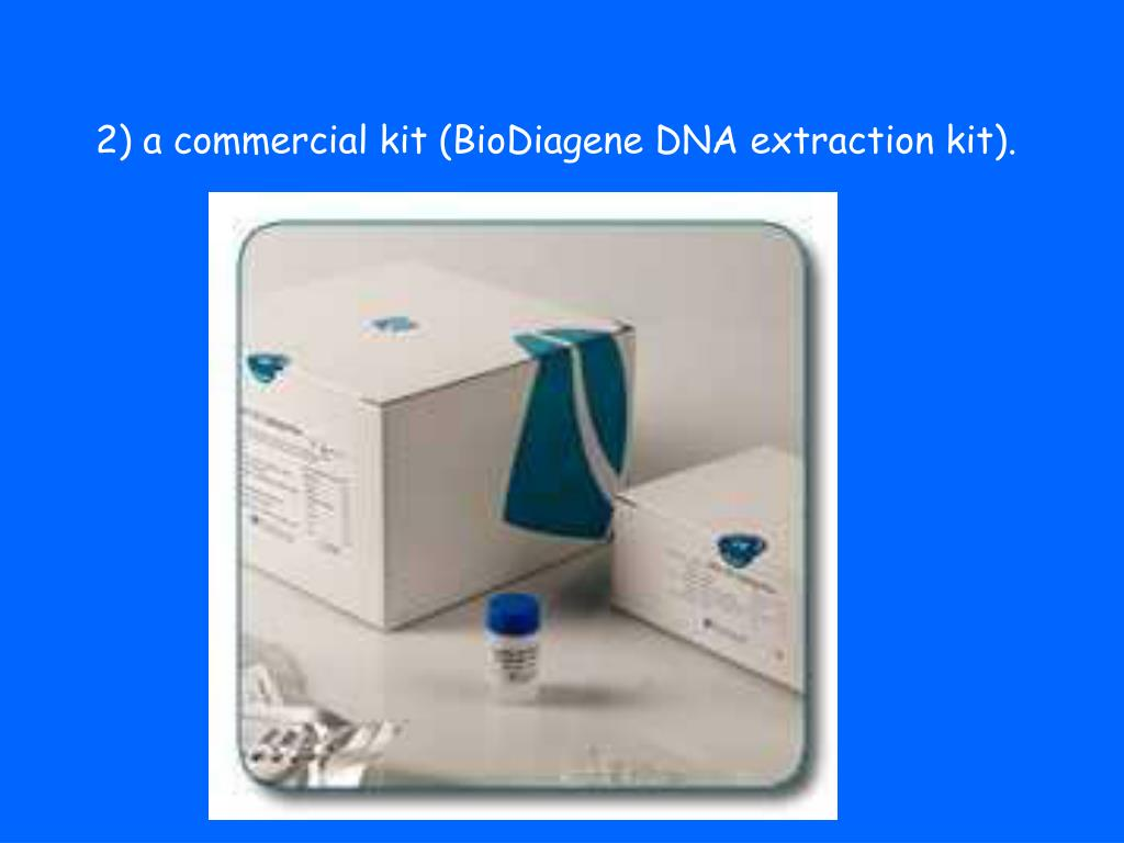 2) a commercial kit (BioDiagene DNA extraction kit).