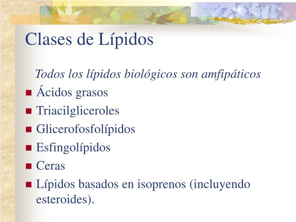 Clases de Lípidos