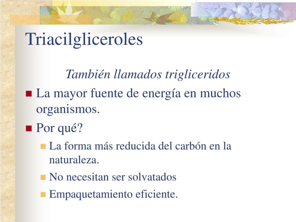 Triacilgliceroles