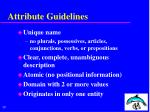 attribute guidelines