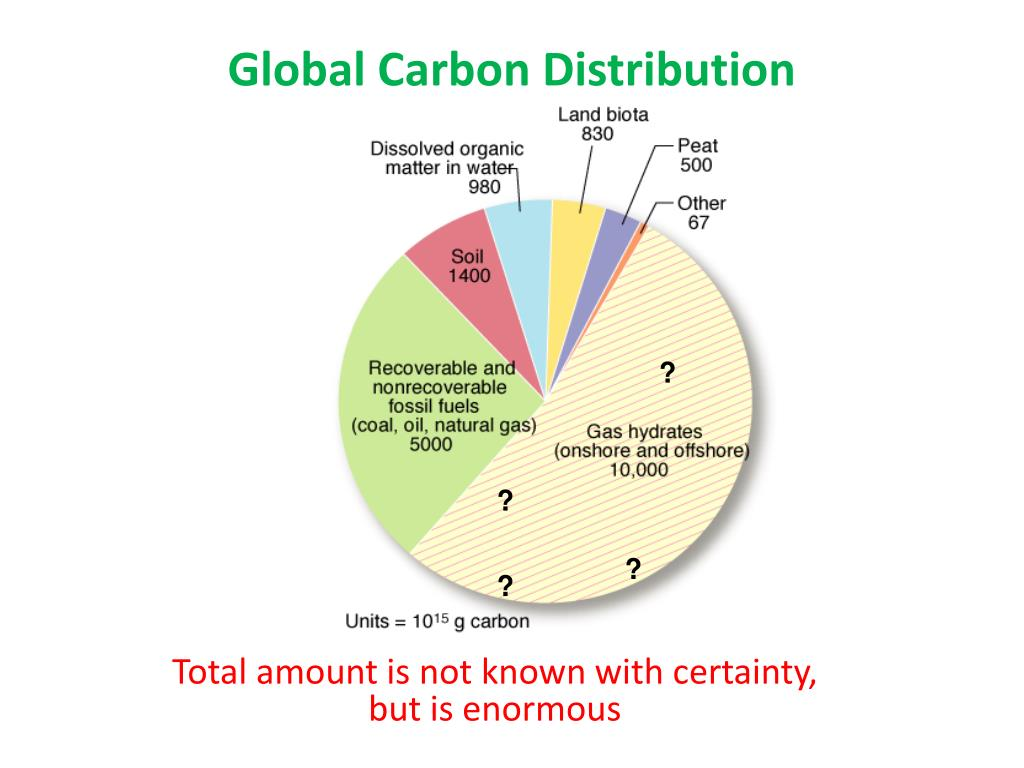 Global Carbon Distribution