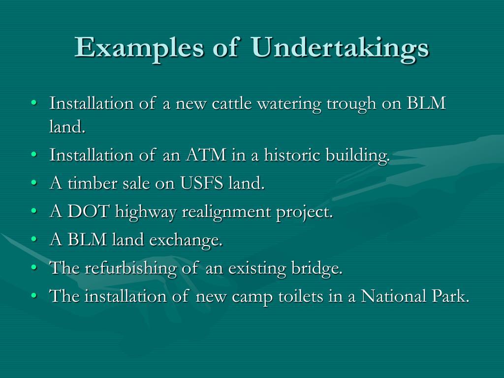 Examples of Undertakings