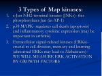 3 types of map kinases