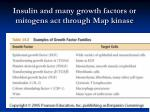 insulin and many growth factors or mitogens act through map kinase