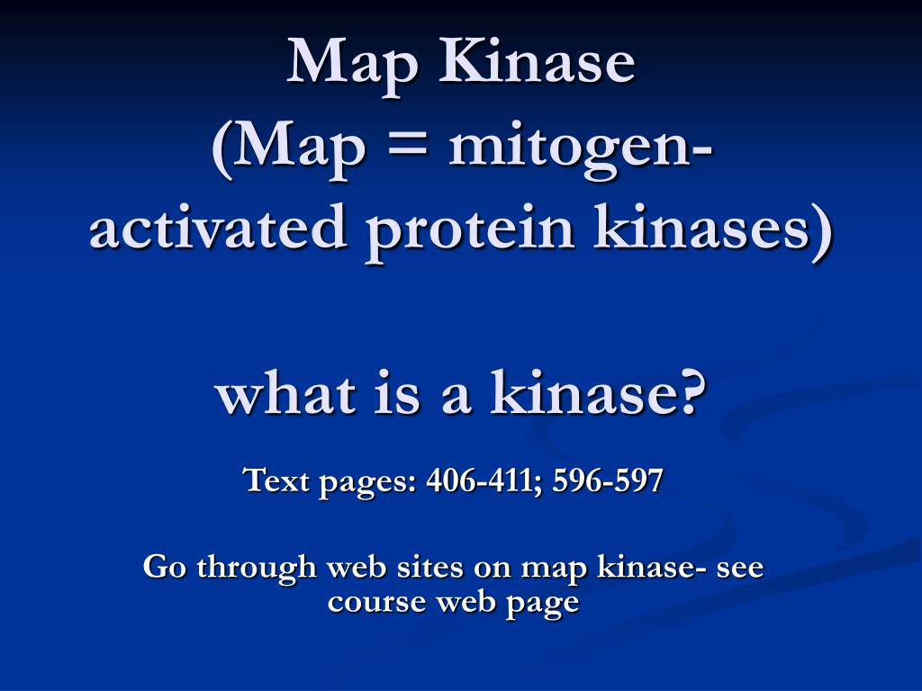 map kinase map mitogen activated protein kinases what is a kinase
