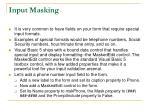 input masking