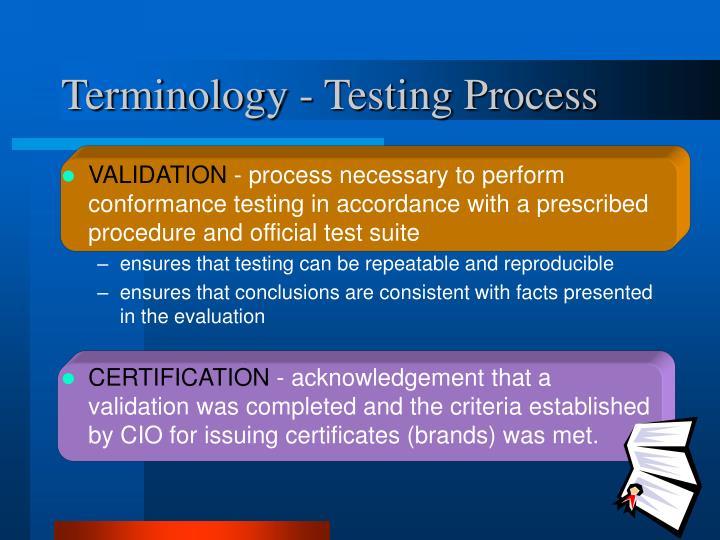 Terminology - Testing Process