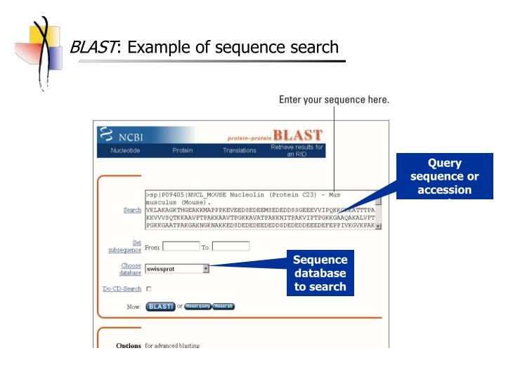 Basic local alignment search tool - ScienceDirect