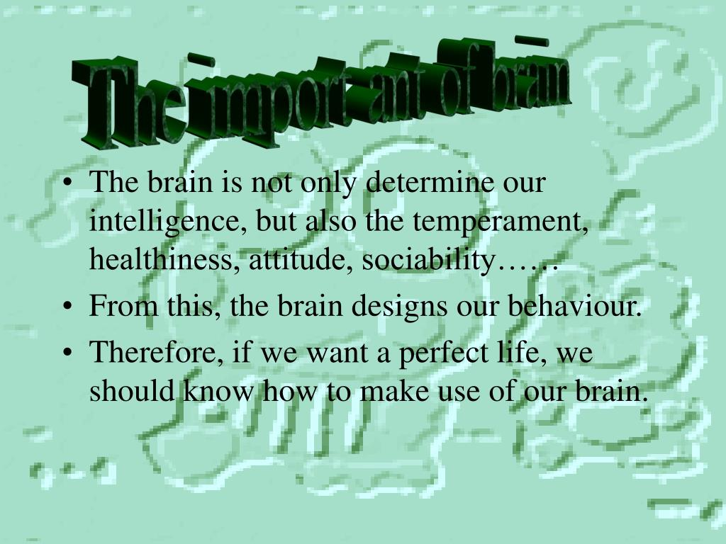 The import ant of brain