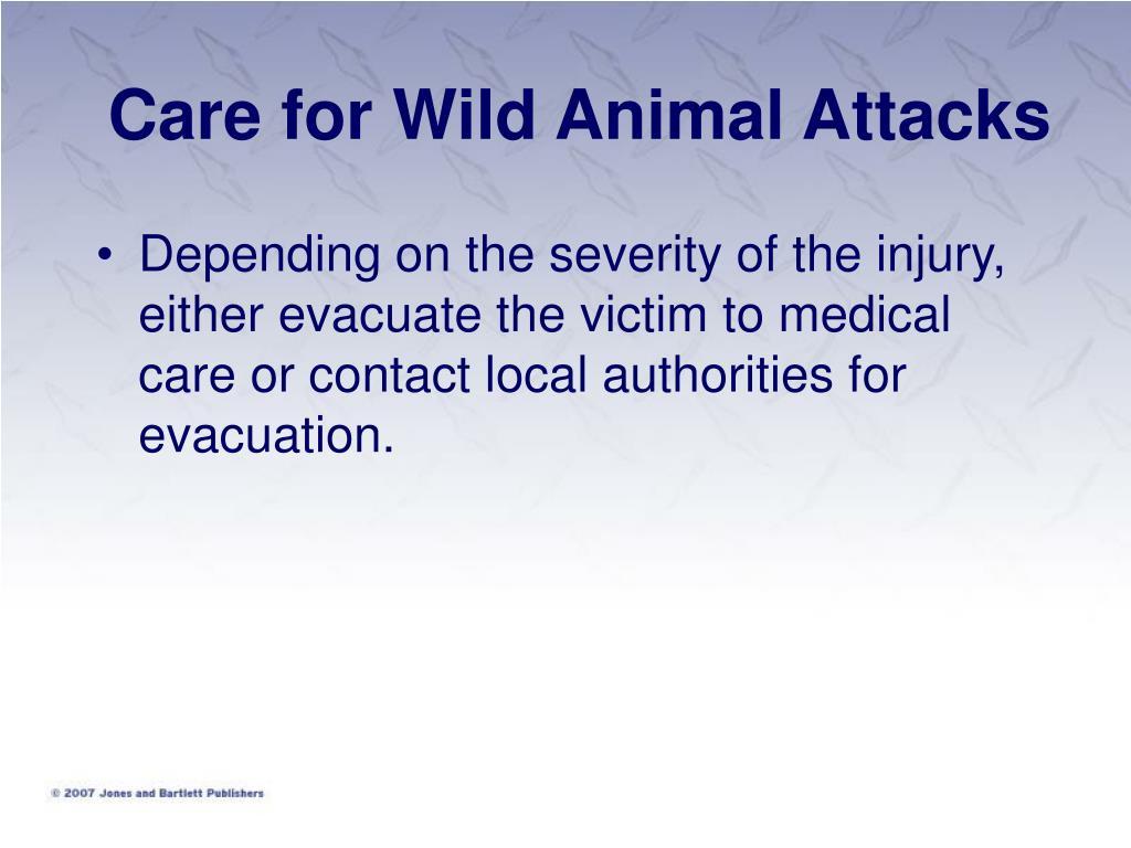 Care for Wild Animal Attacks