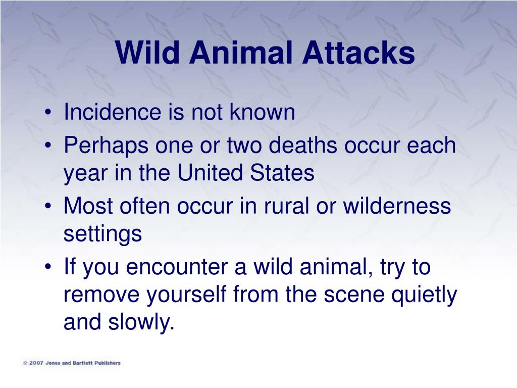 Wild Animal Attacks