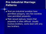 pre industrial marriage patterns
