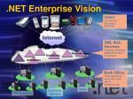 net enterprise vision