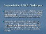 employability of pwd challenges