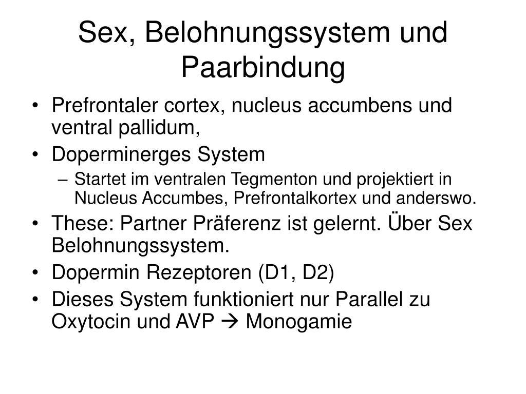 Sex, Belohnungssystem und Paarbindung