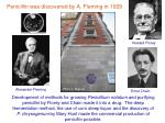 penicillin was discovered by a fleming in 1929